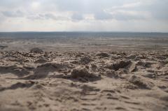 Błędów-Wüste